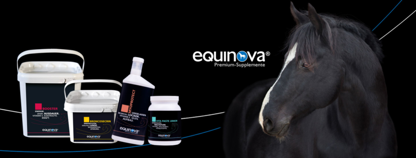 equinova 845x321 - Arthroagil Basic